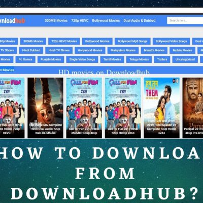 How to download from DownloadHub?